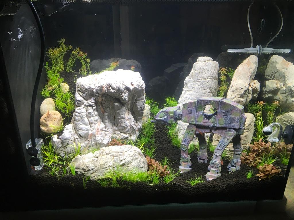 Spec V 16 Gallon Freshwater Aquarium Kit 21 8 X 17 5 X 11 5 Black Fluval Saltwateraquarium Com