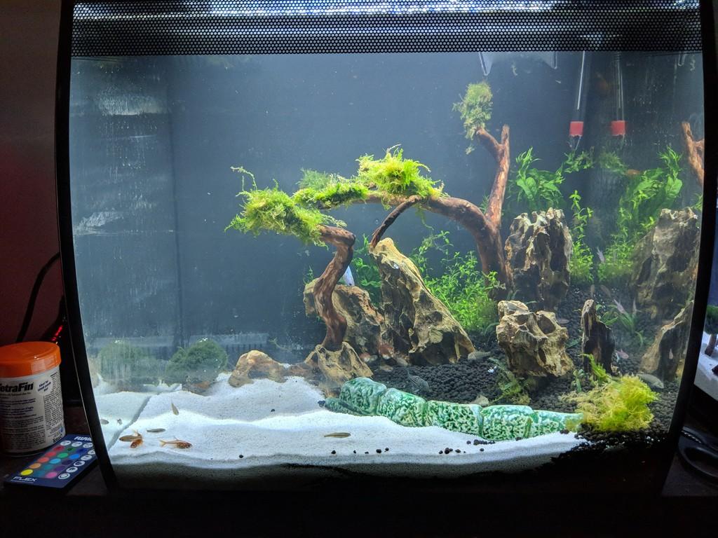 FLEX 57L 15 Gallon Aquarium Kit - BLACK (16